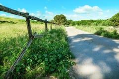 Ogrodzenie blisko pszenicznego pola Zdjęcie Stock