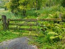 Ogrodzenie, brama przy końcówką droga/ Obrazy Royalty Free