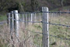 ogrodzenie drut Obraz Royalty Free