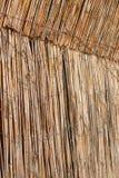 Ogrodzenie od trzciny z światłem od behind Obraz Royalty Free
