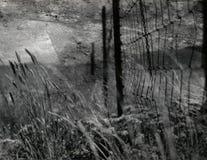 Ogrodzenie w polu ilustracja wektor