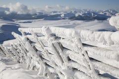 ogrodzenie zakrywający śnieg Zdjęcie Stock