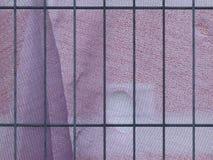 Ogrodzenie zakrywający z purpurowym gazy płótnem obraz royalty free
