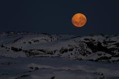 Ogromna księżyc w nocnym niebie nad jeden Antarktyczny Fotografia Royalty Free