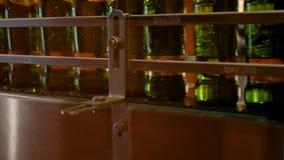 Ogromna liczba szklane butelki z piwem rusza się wzdłuż konwejeru Niska alkohol produkcja Napoje przygotowywają jeść zbiory