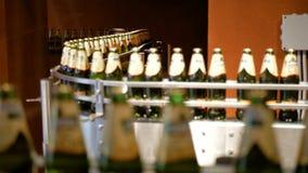 Ogromna liczba szklane butelki z piwem rusza się wzdłuż konwejeru Niska alkohol produkcja Napoje przygotowywają jeść zbiory wideo