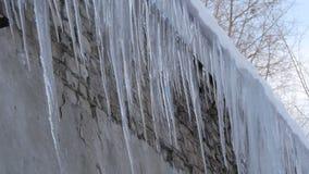 Ogromna liczba wielcy roztapiaj?cy sople na dachu dom w zimie zbiory wideo