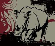 ogromna nosorożec obrazy royalty free
