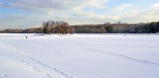 Ogromna przestrzeń pod śniegiem w miasto parku Fotografia Royalty Free