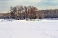 Ogromna przestrzeń pod śniegiem w miasto parku Zdjęcie Stock