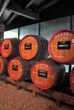 Ogromne baryłki zaznaczają winem Zdjęcie Royalty Free