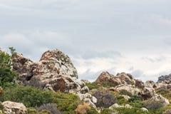 Ogromne skały i zieleni krzaki pod dżdżystym niebem zdjęcie royalty free