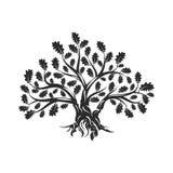 Ogromny i święty dębowego drzewa sylwetki logo na białym tle royalty ilustracja