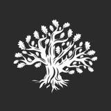 Ogromny i święty dębowego drzewa sylwetki logo odizolowywający na ciemnym tle ilustracji