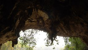 Ogromny kierdel dymówka ptaki Lata przy wejściem Duża jama z Rzecznym spływaniem od go w Tropikalnych dżunglach przy przy zdjęcie wideo