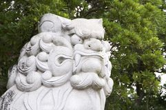 Ogromny Komainu lew jak opiekunu kamienia statua przy Izanagi świątynią zdjęcia stock
