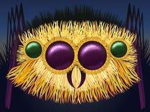 Ogromny kosmaty pająk ilustracja wektor