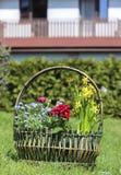 Ogromny koszykowy pełny kolorowi kwiaty Zdjęcia Royalty Free