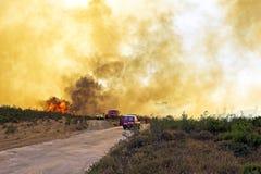 Ogromny pożar lasu zagraża parka narodowego w Pora Fotografia Royalty Free