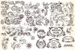 Ogromny set wektorowi dekoracyjni elementy royalty ilustracja