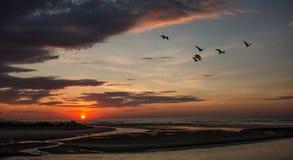 Ogunquit, Maine, zonsopgang bij strand in de zomer Royalty-vrije Stock Afbeeldingen