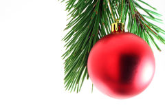 Oh Christmas Tree. A christmas tree ornament against pine needles stock image
