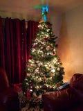 Oh Kerstboom! stock foto