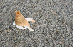Oh no!. Ice cream fallen on the street Royalty Free Stock Photo