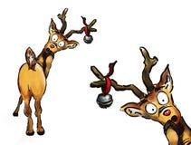 Oh nr! Het Rendier van Kerstmis twee Stock Afbeeldingen