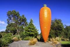 Ohakune Grote Wortel Nieuw Zeeland stock fotografie