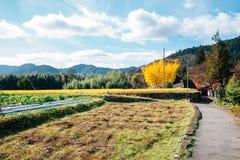 Ohara bygdby i Kyoto, Japan Arkivfoto
