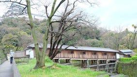Ohashi Roka, Wakayama Castle Royalty Free Stock Image