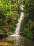 Ohau小河封印客栈,在Kaikoura附近的瀑布在新西兰的南岛 免版税库存图片