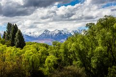Ohau dalsikt - Nya Zeeland Arkivbilder