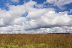 Ohio-Grasland stockfotos