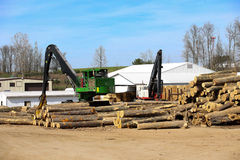 Ohio logging. Logging is the cutting, skidding, on-site processing, and loading of trees or logs onto trucks[1] or skeleton cars Stock Image