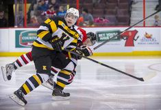OHL Kingston Frontenacs Stock Images