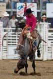 Ohne Sattel - Schwestern, Oregon-Rodeo 2011 Stockbild