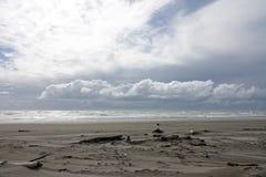 Ohopestrand in Whakatane, Nieuw Zeeland stock foto