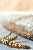 Ohren des Weizen- und Vollweizenbrotes Lizenzfreies Stockfoto