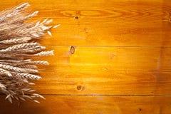 Ohren des Weizens. Stockfoto