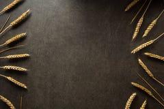 Ohren des Weizens auf schwarzem Hintergrund Stockfoto