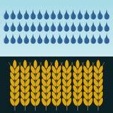 Ohren des Weizens im Regen Die Bearbeitung des Kornes vektor abbildung