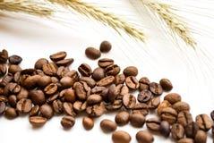 Ohren und Kaffee Lizenzfreie Stockbilder