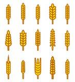 Ohren von Weizenbrotsymbolen Lizenzfreie Stockbilder