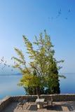 湖ohrid 库存照片