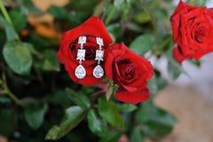 Ohrringe auf roter Rose Stockbild