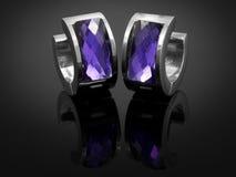 Ohrringe mit Kristallen - Edelstahl Lizenzfreies Stockbild