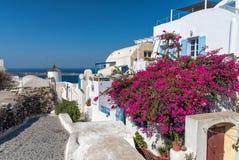 Oia - Santorini Cyclades ö - Aegean hav - Grekland royaltyfria bilder