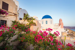 Oia village on Santorini island, Greece. World famous traditional whitewashed chuches and houses and lush floral vegetation of Oia village on Santorini island Stock Photo